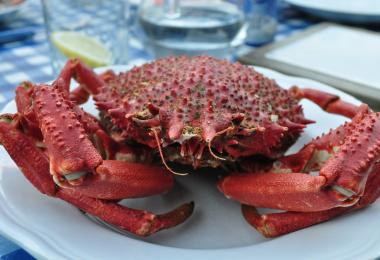 cuisson arraignée de mer